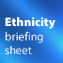 Briefing on targeting by ethnicity